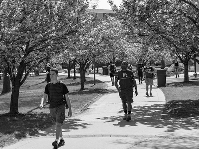 Students walk on uedbet's Cougar Walk.