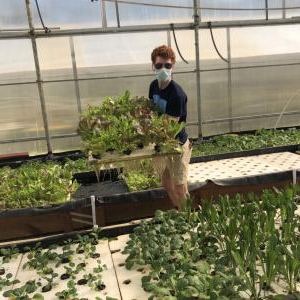Kean student tends to greenhouse plants